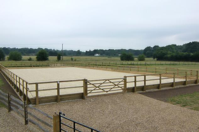 Mark Scott Equestrian Arena 5
